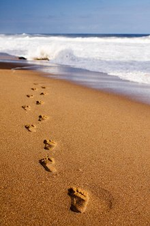 Home. Library Image: Footsteps in Sand